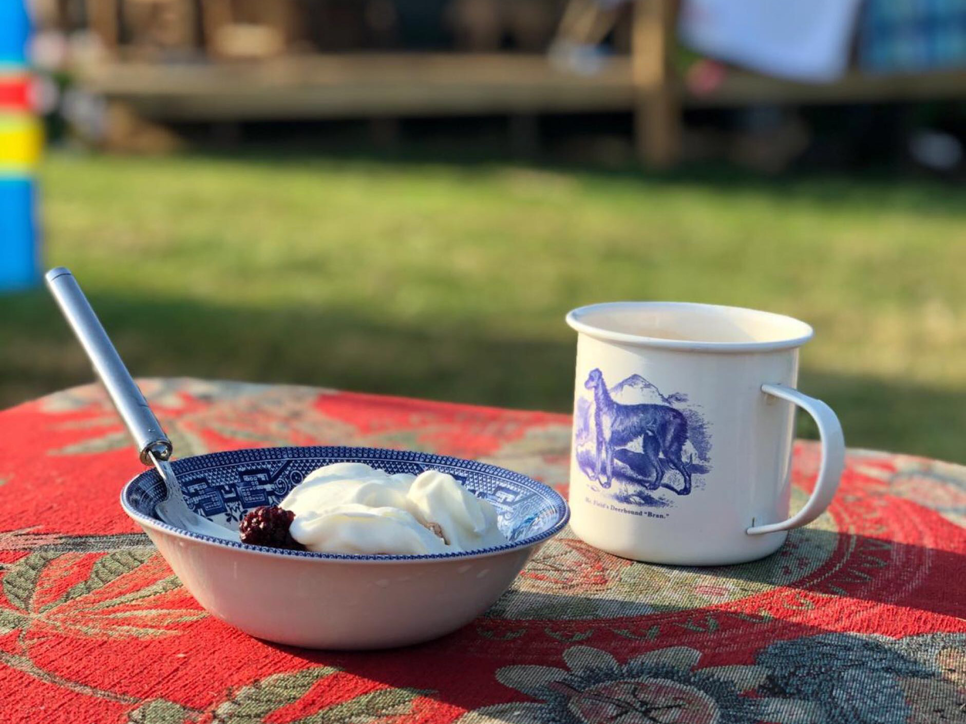 Tea and breakfast in the sun